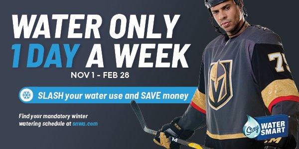 Winter Watering Schedule flyer